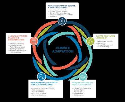 ALN Competency Framework